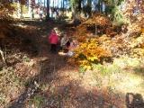 Vítání podzimu 2013