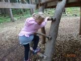 Vycházka na Lázně na zážitkové lesní hřiště