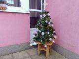 Vánoční zpívání v Paraplíčku